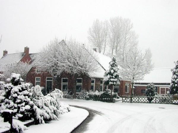 winter-lawn_snow-e1287367906880
