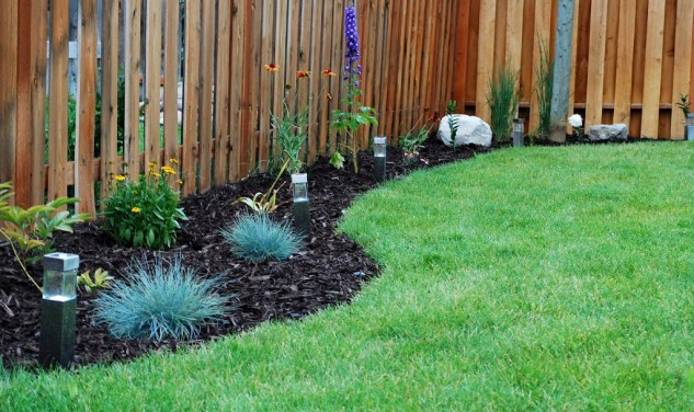 Cheap-Backyard-Fence-Idea