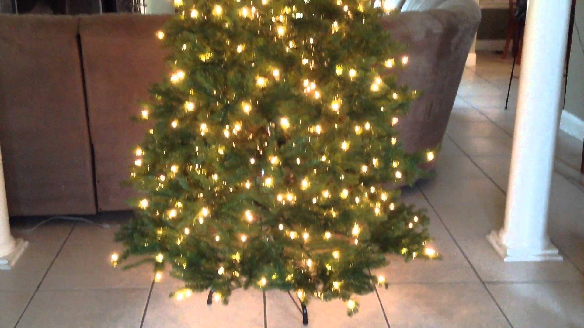 How To Find The Right Christmas Tree Company